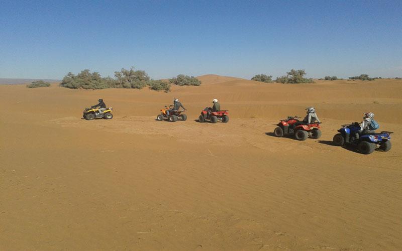 Sahara Relax: Quad Biking & ATV Tours