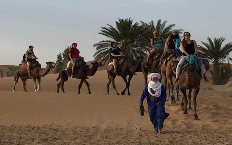 Zagora Sahara Desert and Camel ride