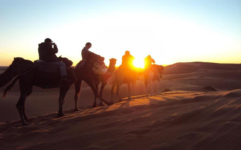 Camel ride into the Sahara desert