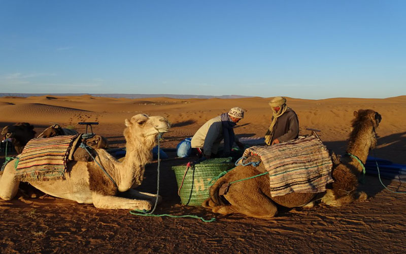 Travel-to-the-he-desert-on-camels-from-zagora-M'hamid-Ouled Driss